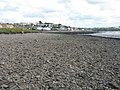 Hazelbeach Foreshore - geograph.org.uk - 1416820.jpg