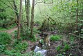 Headwaters of the River Arun, Hamper's Lane - geograph.org.uk - 1288168.jpg
