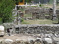 Heraclea Lyncestis, Republic of Macedonia (7451364570) (3).jpg