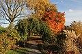 Herbst im Westfalenpark - panoramio (11).jpg