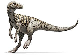 Ischigualasto Provincial Park - Herrerasaurus