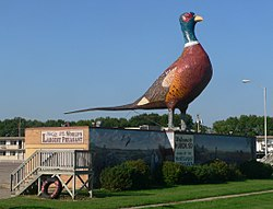 """World's Largest Pheasant"" sculpture on U.S. Highway 14"