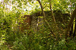 Hyde Mill Ruins