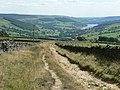 In Moor Lane and Nidderdale - geograph.org.uk - 226522.jpg