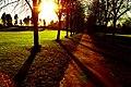 In The Shadows - panoramio.jpg