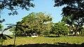 Indaiatuba - State of São Paulo, Brazil - panoramio - joao batista Shimoto.jpg