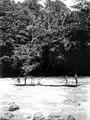 Indiankanot far ut för fors i floden. Se . Nordenskiöld, Indianerna på Panamanäset. Sthlm - SMVK - 004020.tif