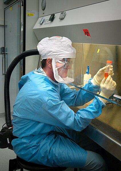 Ficheiro:Influenza virus research.jpg