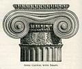 Ionic capital with shaft - Mahaffy John Pentland - 1890.jpg