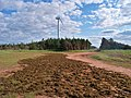 Irish Moss drying, North Cape, PEI (7532008780).jpg
