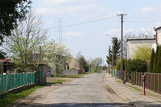 Januszewo, Środa Wielkopolska County Village in Greater Poland Voivodeship, Poland