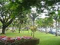 Jardin de la Mairie de Saint Pierre (3046887909).jpg