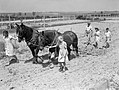 Jean Harwell (left) and Alice Norman lead horses 'Daisy' and 'Captain' as they harrow a field at Ashwell Merchant Taylors School near Baldock in Hertfordshire, 1942. D8549.jpg