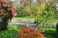 Jesień widziana z okna - panoramio.jpg