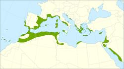 Mapa de distribución.