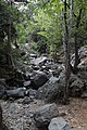 Kaledonia Waterfall Trail, Cyprus - panoramio.jpg