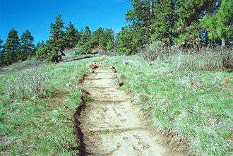 Kamiak Butte - Image: Kamiak Butte Pine Ridge Trail