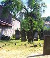 Kamienna Góra, cmentarz żydowskiPICT6703.JPG
