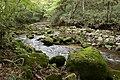 Kanomata River 01.jpg
