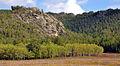 Karkaraly National Park 2.jpg