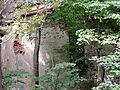 Karwiny ruina kościoła-001.JPG