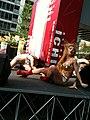 Keiko Bando 29 - in action - AKIBA ICHI Golden Week Special Live 2010 (2010-05-05 15.36.24).jpg