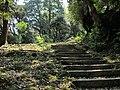 Kinosakicho Yushima, Toyooka, Hyogo Prefecture 669-6101, Japan - panoramio (10).jpg