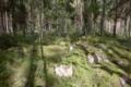 Kiviumpaidanmäki eli Pellasmäki 3.png