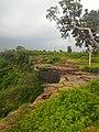 Kordara, Madhya Pradesh 485446, India - panoramio (10).jpg