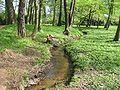 Kropstaedt castle park stream.JPG