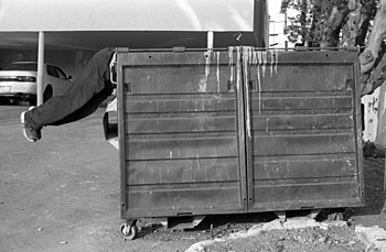 LA dumpster dive.jpg