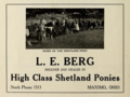 L E Berg - Breeder and dealer in high class Shetland ponies - Maximo Ohio 1915.tiff