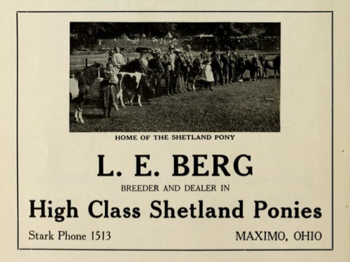 File:L E Berg - Breeder and dealer in high class Shetland ponies - Maximo Ohio 1915.tiff