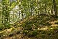 Lager des Greifensteiner Kalkes.jpg