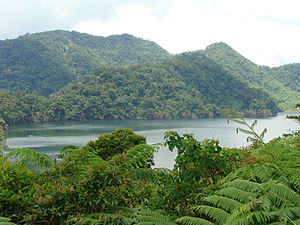 Balinsasayao Twin Lakes Natural Park - Lake Balinsasayao