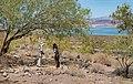 Lake Mead Visitor Center Trail (cd798e19-80a2-4d34-8f58-c241cfb77ba7).jpg