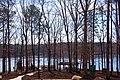 Lake Wheeler Park - panoramio (8).jpg