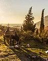 Landscape with donkey - Flickr - raymond zoller.jpg