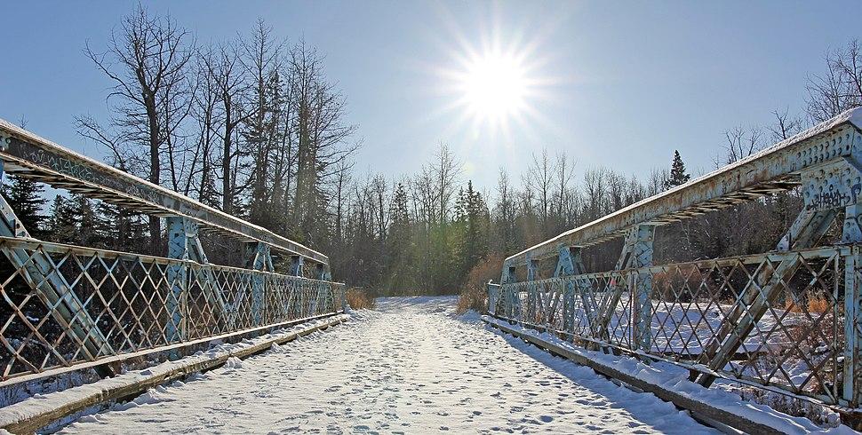 Larch Sanctuary bridge