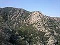 Laroque des Alberes - panoramio (5).jpg
