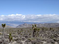 May 15: Las Vegas is founded with auction of 110 acres (0.45 km) Lasvegasclimate.jpg