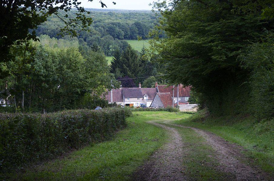 Le bas de La Celle, La Celle Sur Nièvre, Nièvre, France