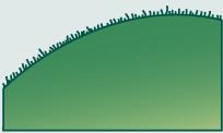 Leaf morphology ciliate