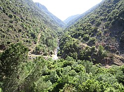 Baabda District