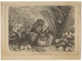 Lepus cuniculus - 1867 - Print - Iconographia Zoologica - Special Collections University of Amsterdam - UBA01 IZ20600225.tif