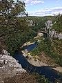 Les gorges du Chassezac vus d'en haut . Bois de Païolive.jpg