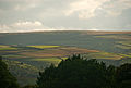 Ley Hill from Bury Castle.jpg
