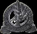 Logistics Corps hat badge IDF.png