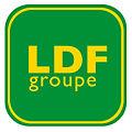 Logo ldfgroupe.jpg