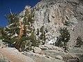 Lone pine lake 2 - panoramio.jpg